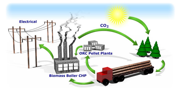 Biomass Garbage Electricity Energy ~ Biomass energy green