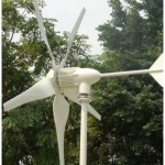 Wind Power for Domestic Use