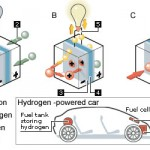How Hydrogen Fuel Cells Work?